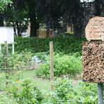 Tuinbouw